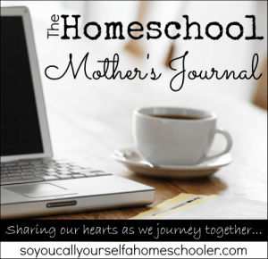 Weekly Wrap-Up/Homeschool Mother's Journal (11/11/13)