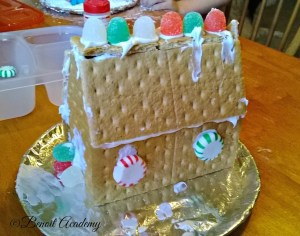 Our Graham Cracker House & T.A.R.D.I.S.s!