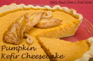 Pumpkin Kefir Cheesecake Recipe