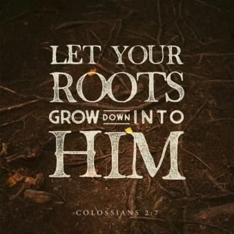 115-daily-dependence-colossians-2-6-7