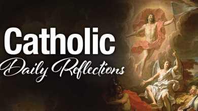 The Catholic Sunday Mass 6 June 2021 Homily - Corpus Christi
