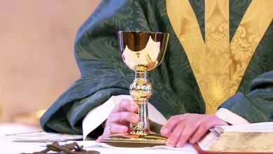 Tuesday Catholic Today Daily Mass 24th November 2020