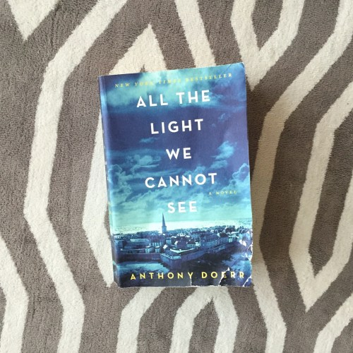 all the light we cannot see novel