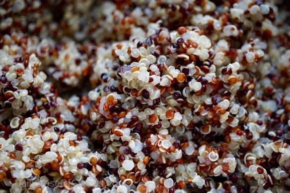 Cooked Rainbow Quinoa