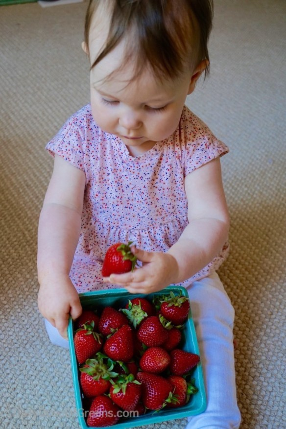 Abby with strawberries