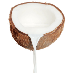 food_-_coconut_jpg
