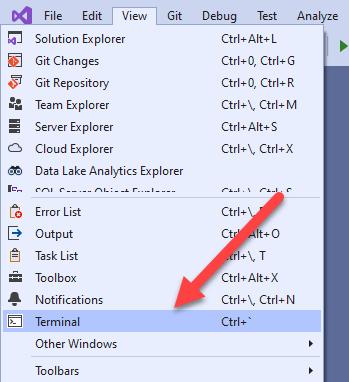 Visual Studio Terminal