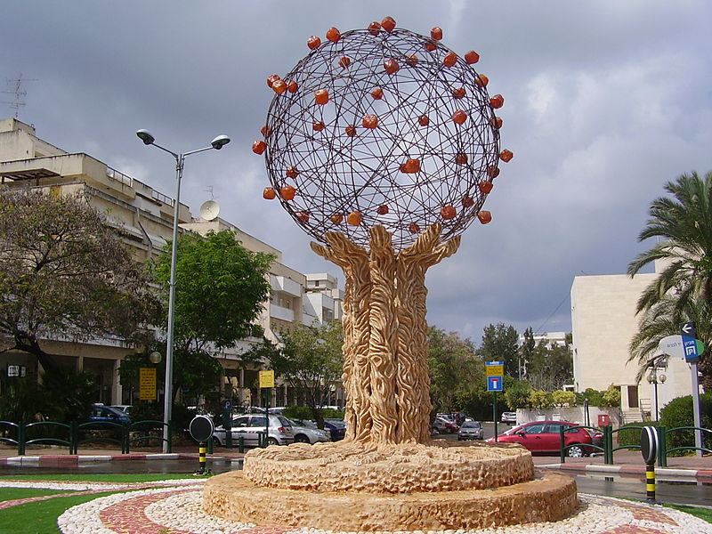 800px-PikiWiki_Israel_12237_quot;orange_treequot;_in_raanana