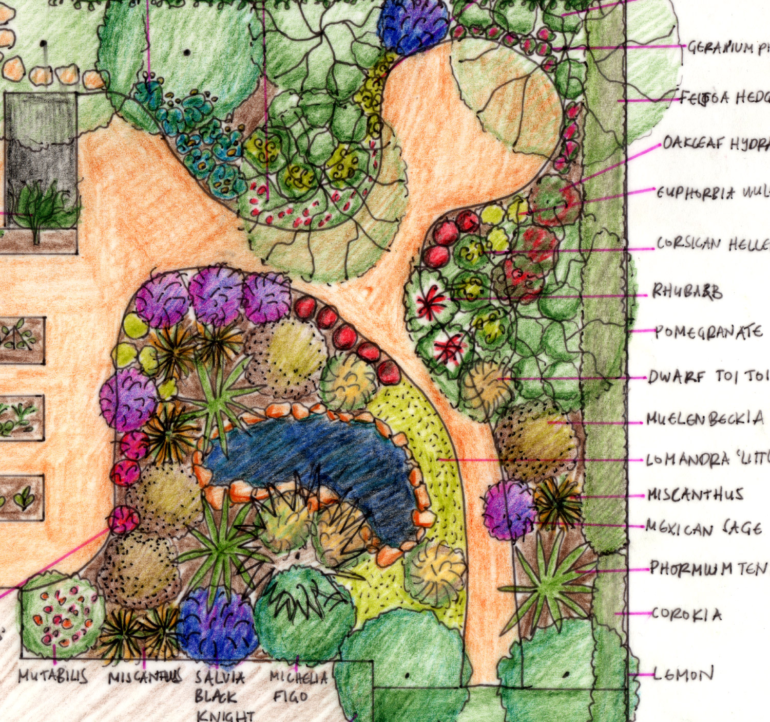 Garden Consultations Daily Gardener Schematic If You Need Further Help I Can Draw Up A Concept Design For Your Outdoor Space Or Take It To The Next Level With Comprehensive