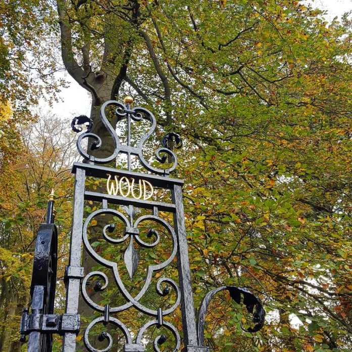 Autumn Walk Spanderswoud