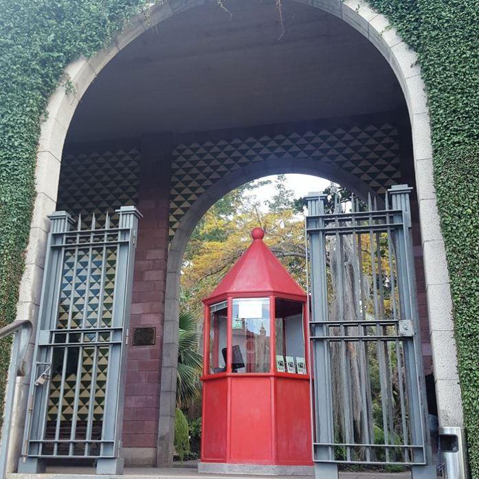 botanische tuin Tenerife