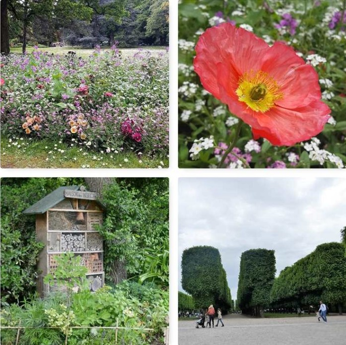 Jardin du Luxembourg Green Paris