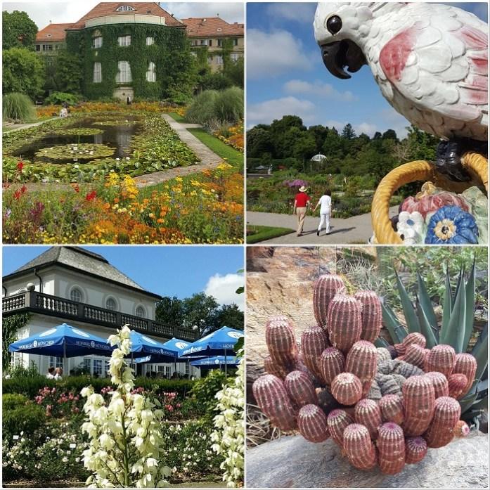 Munchen botanic garden