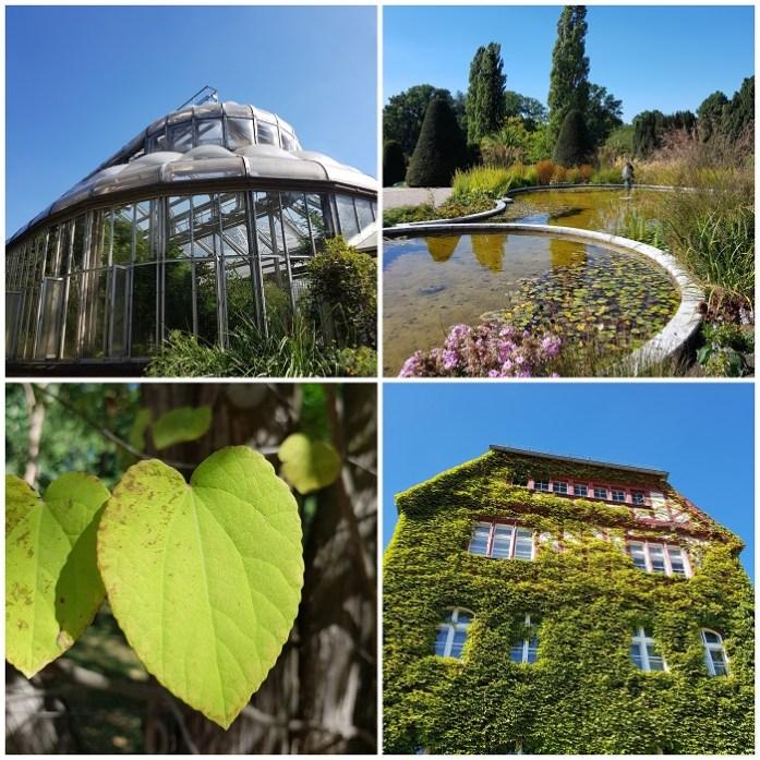 botanische tuin in berlijn