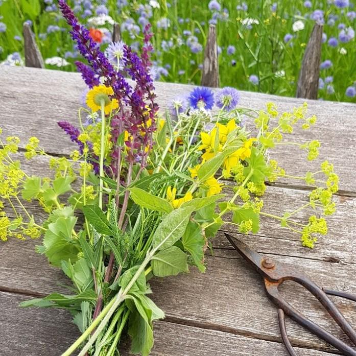 pluktuin lokale verse bloemen van het seizoen