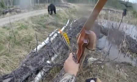 man-vs-bear-5926b47fc36188b5078b45f7