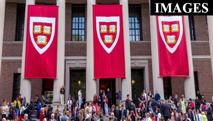 Here Are The Memes That Cost 10 Students The Chance To Attend Harvard