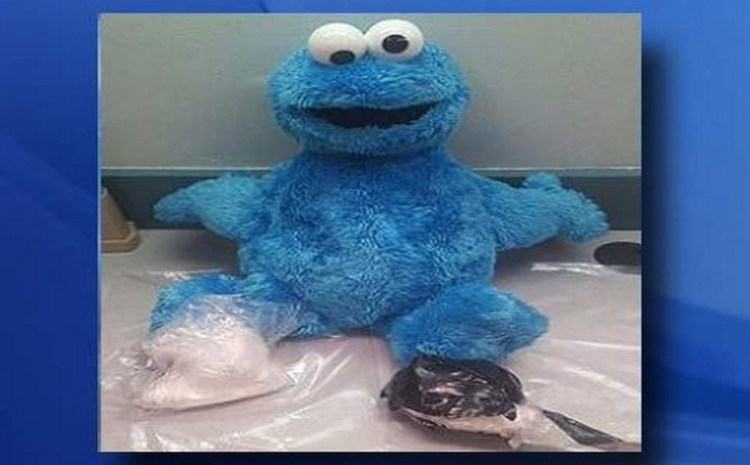 'Cookie Monster' Doll Cocaine Bust: 'Me No like Drugs' [video]