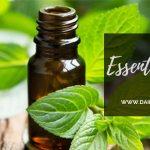 essential oil,