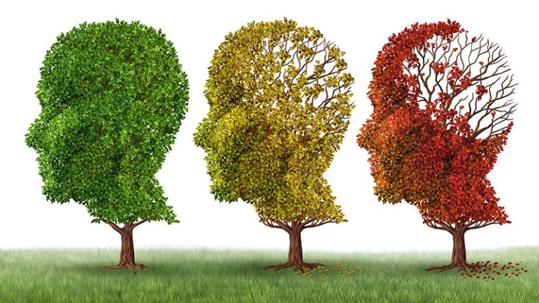 Experts Revealed How To Spot The Signs Of Dementia