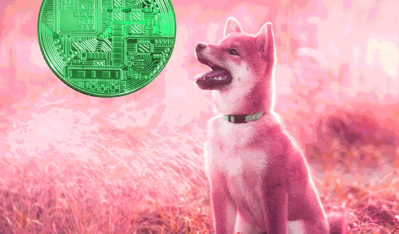 Robinhood Says Dogecoin Generating Huge Portion of Crypto Revenue, Issues Warning on Market Volatility   The Daily Hodl