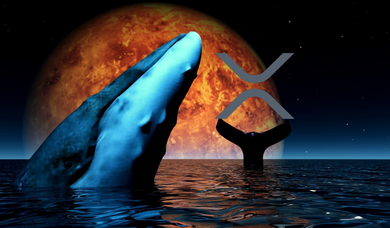 Crypto Whales Moving Millions in XRP As Google Searches for Crypto Asset Explode to All-Time High