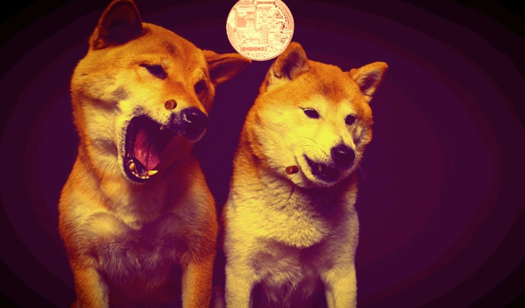 Dogecoin Far From Done, Says Top Analyst – Here's How High It Could Go