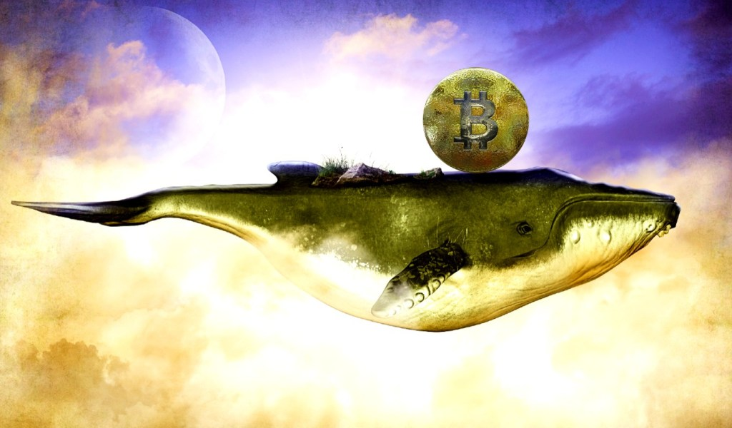 Crypto Whale Activity Not Looking Good for Bitcoin, Says Quant Analyst