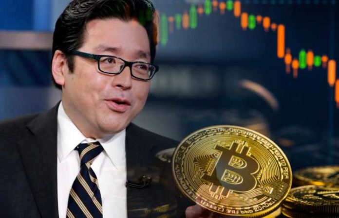 Tom Lee: Trump's Comments Could Carry Bitcoin's Price To New 2019 Highs