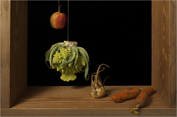 Juan Snchez Cotn A modern muse for still life
