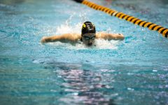 Hawkeye swimming and diving looks for another Cy-Hawk victory