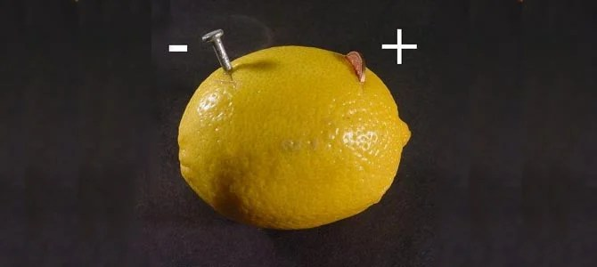 Electric Lemon - Picture courtesy hilaroad.com