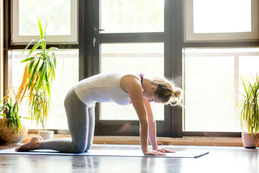 10 Yoga Poses For Flexibility with Impressive Yoga Benefits 1 - Daily Medicos