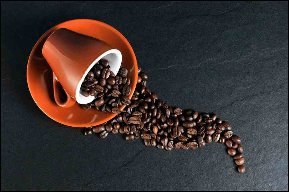 All About the coffee: How long does the Coffee last? 11 - Daily Medicos