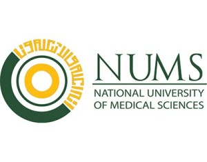 NUMS Aggregate Calculator 11 - Daily Medicos