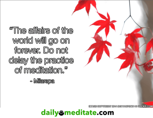 """Meditation Quote 5: """"The affairs of the world will go on forever. Do not delay the practice of meditation."""" – Milarepa"""