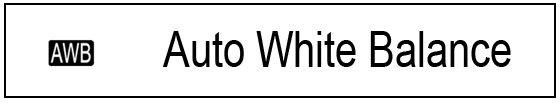 White Balance 101 2 Daily Mom Parents Portal