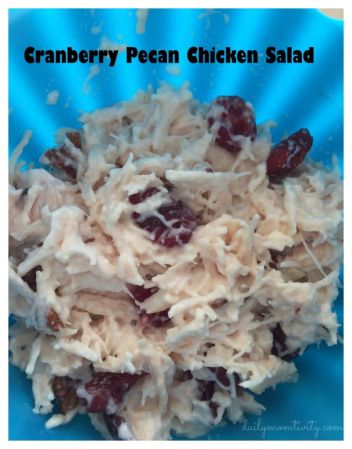 An easy chicken salad that is full of flavor