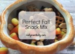 Perfect Fall Snack Mix