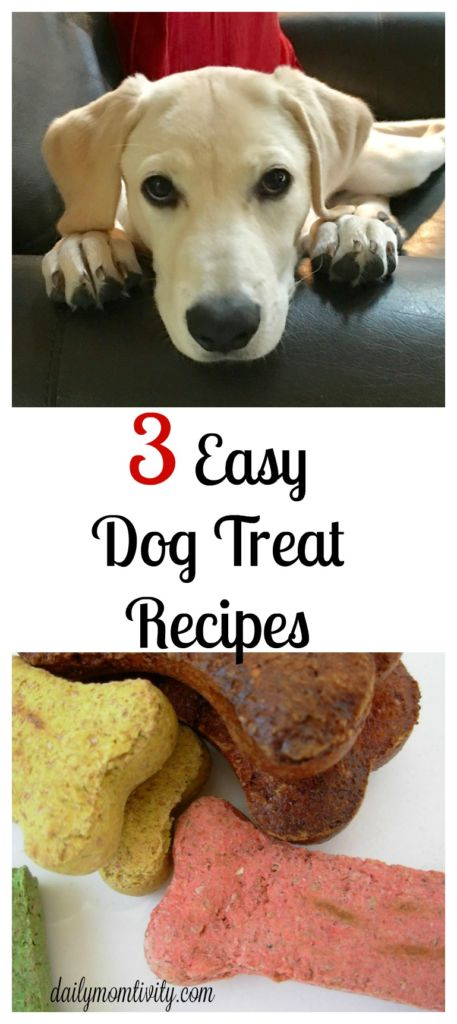 Check out these 3 easy recipes for DIY dog treats for your puppy!