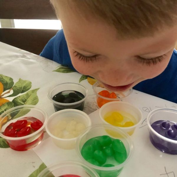 Jelly Bean Activities to Keep the Kids Busy