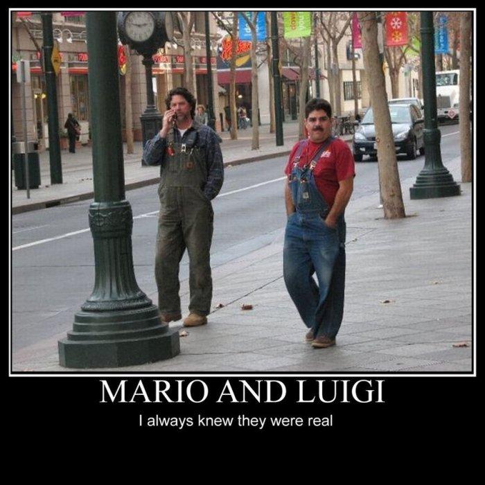 Mario et Luigi.jpg