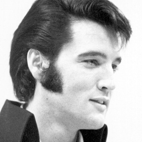 Read more about the article Elvis Presley