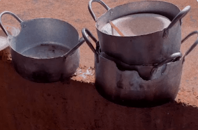 Students in shock as they return to school to see rats have eaten their pots [photos]