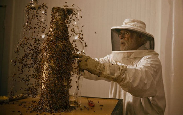 Amazing Sculptures Created By Bees