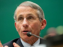 Fauci: Americans May Have To Continue Masking Still In 2022