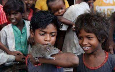 وہ گاﺅں جس کے رہنے والے صرف چوہے اور کیڑے کھا کر زندہ رہتے ہیں