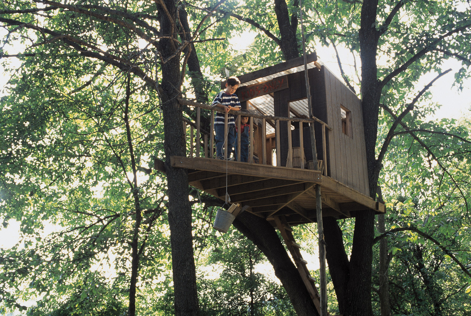 How To Build The Best Treehouse Daily Parent