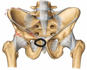 joint pain hips Pinner pain