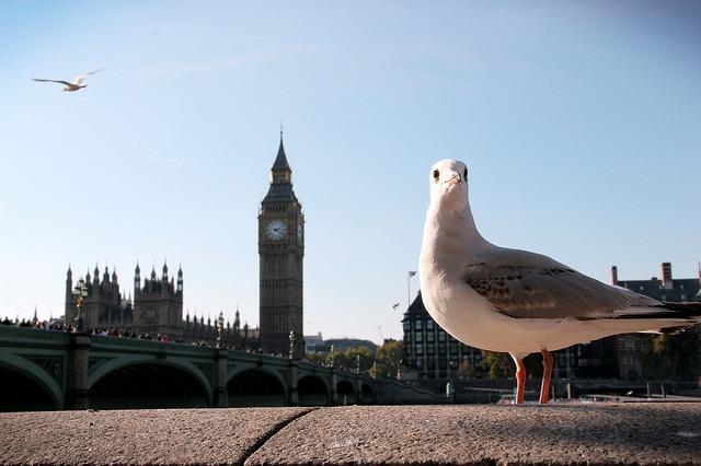 Londra, trasferirsi a londra, vademecum londra,